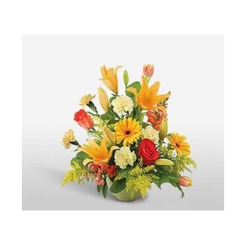 https://www.fleurisles.com/104-thickbox/fraicheur.jpg
