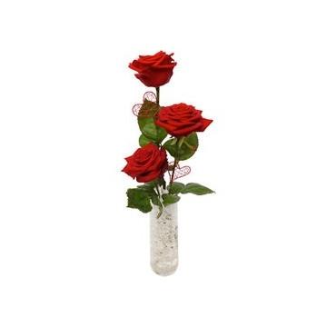 https://www.fleurisles.com/115-thickbox/only-you.jpg