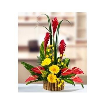 https://www.fleurisles.com/138-thickbox/deesse.jpg