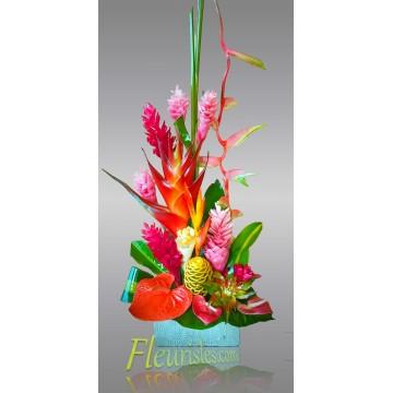 https://www.fleurisles.com/172-thickbox/fenm-creole.jpg