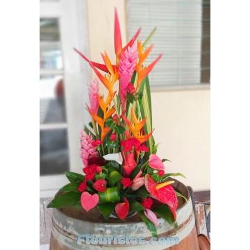 https://www.fleurisles.com/197-thickbox/mamie-calin.jpg