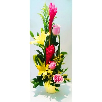 https://www.fleurisles.com/57-thickbox/douceur.jpg